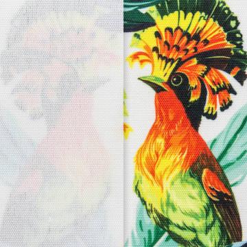 Canvas Surface Texture
