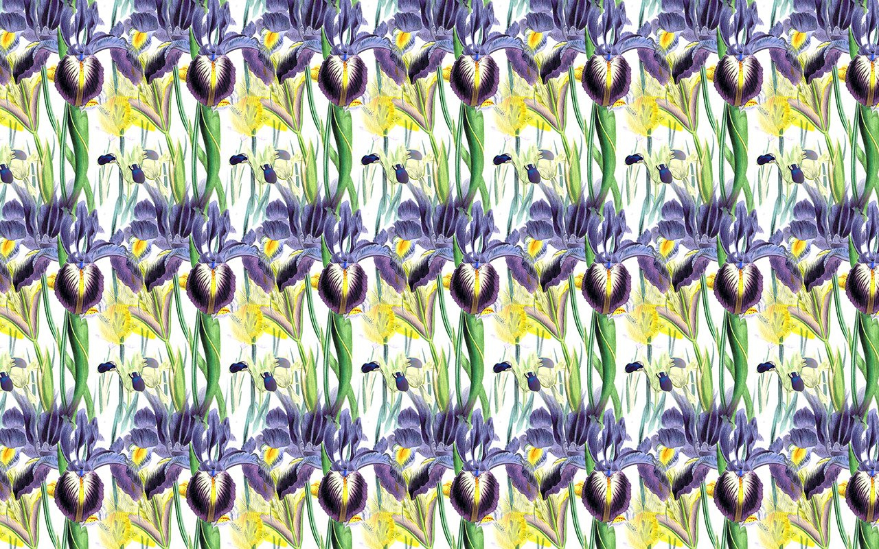 Iris Botanical Magic Repeat