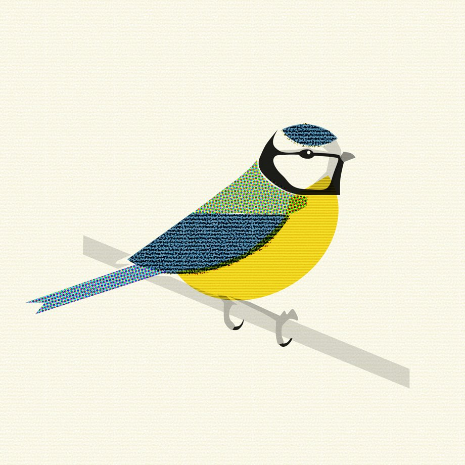 Blue Tit Stylised
